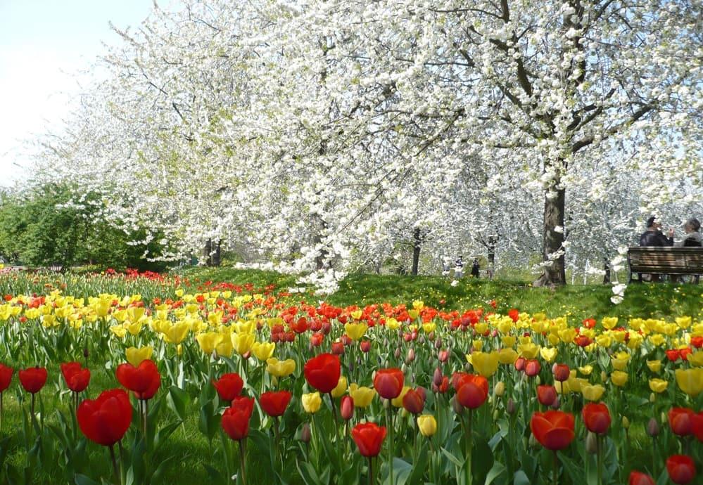Primavera em Berlim