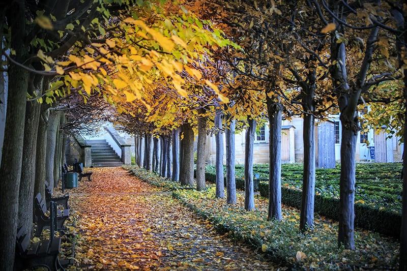 Paisagem em Berlim no mês de outubro