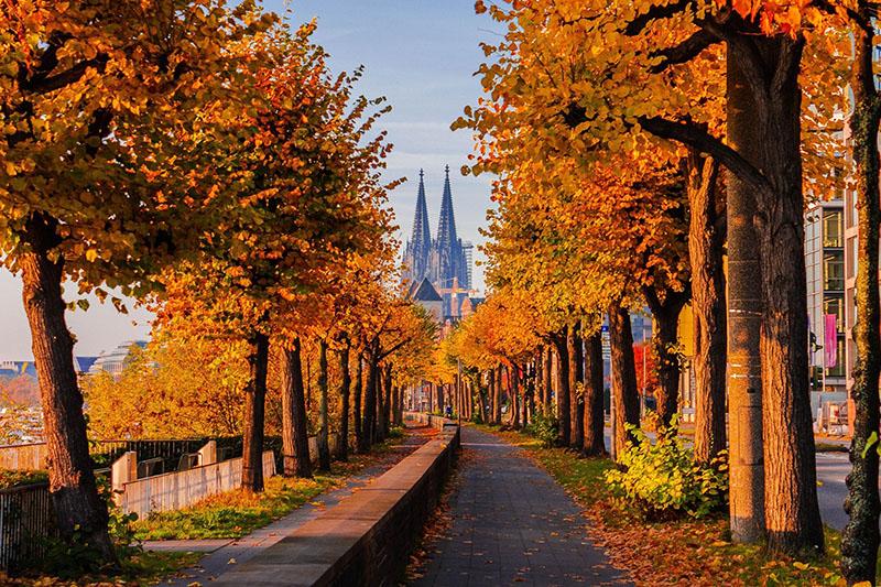 Passeios românticos em Colônia